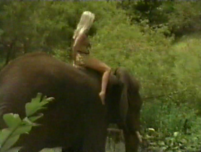 naked-girl-riding-elephant-anal-lube-photo